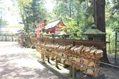2014京阪神:2014奈良 (19).JPG