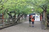 2014京阪神:2014奈良 (3).JPG