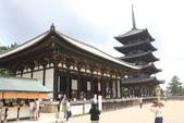 2014京阪神:2014奈良 (29).JPG