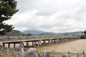 2014京阪神:嵐山 (3).JPG