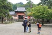 2014京阪神:2014奈良 (13).JPG