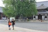 2014京阪神:京都西本願寺 (5).JPG
