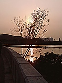 風景:相片0146.jpg