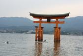 廣島四國:3-宮島嚴島神社 (34).JPG