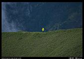 20090725-0726 合歡北峰、西峰:19.jpg