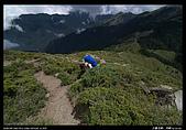 20090725-0726 合歡北峰、西峰:10.jpg