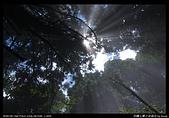 20090711谷關七雄之馬崙山:12.jpg