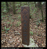 20090711谷關七雄之馬崙山:19.jpg