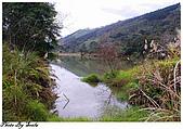 20081229南庄:向天湖-環湖步道一景(二).jpg
