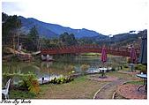20081229南庄:向天湖-湖中一景(二).jpg