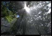 20090711谷關七雄之馬崙山:13.jpg