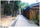 20081229南庄:向天湖-環湖步道一景,右邊那是化妝室.jpg