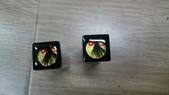 赤牛角臍帶印章、胎毛印章(對印組):198382.jpg