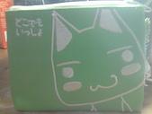 隨手拍:Toro貓