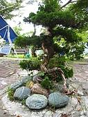 2008夏。一個人環島 Day4:IMG_1090.JPG