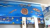 2008夏。一個人環島 Day10:IMG_2122.JPG