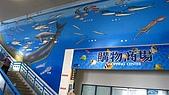 2008夏。一個人環島 Day10:IMG_2123.JPG