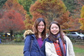 20141113香港黎小姐梨山/福壽山/武陵三日遊:DSC_0543.JPG