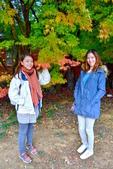 20141113香港黎小姐梨山/福壽山/武陵三日遊:DSC_0371.JPG