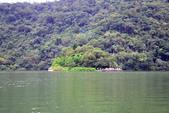 隨手拍~梅花湖:DSC_0469.jpg