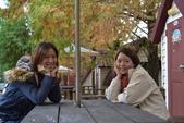20141113香港黎小姐梨山/福壽山/武陵三日遊:DSC_0579.JPG