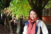 20141113香港黎小姐梨山/福壽山/武陵三日遊:DSC_0385.JPG