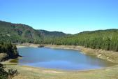 20141101台北王小姐太平山/翠峰湖/山毛櫸步道一日遊:DSC_0167.JPG