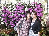 宜蘭計程車包車旅遊-20110206香港林小姐宜蘭一日遊:香港林小姐宜蘭包車旅遊~金車礁溪蘭花園-3.jpg