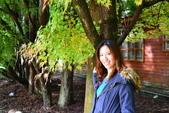 20141113香港黎小姐梨山/福壽山/武陵三日遊:DSC_0383.JPG