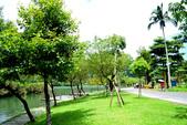 隨手拍~梅花湖:DSC_0030.jpg