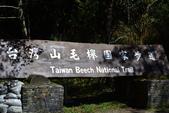 20141101台北王小姐太平山/翠峰湖/山毛櫸步道一日遊:DSC_0172.JPG