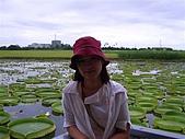 20050614台南白河之旅:CIMG1386