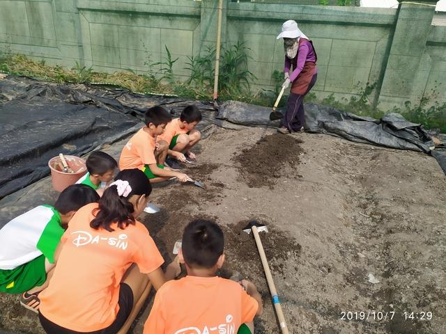 108-1綠園照片:IMG_20191007_142953.jpg