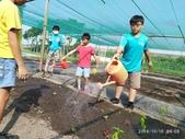 108-1綠園照片:IMG_20191016_090848.jpg