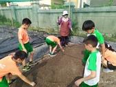 108-1綠園照片:IMG_20191007_143944.jpg