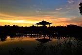 夕陽:DSCN2345.JPG