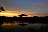 夕陽:DSCN2354.JPG