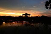 夕陽:DSCN2350.JPG