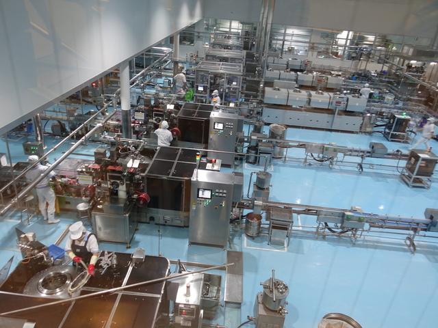 DSC07843.JPG - 養樂多工廠