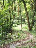 林口新林步道:P1010045.jpg