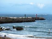 水尾漁港沿海域:P5140013.jpg