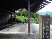 頭寮生態步道:P1010033.JPG