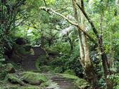 平溪孝子山:P1010005.JPG