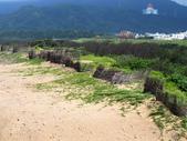 水尾漁港沿海域:P5140008.JPG