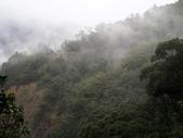 ~福山部落~:DSCN5232.jpg