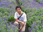 2006-05-07后豐鐵馬道:DSCN2094