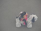 2006-05-06劍湖山遊~~:DSCN1995