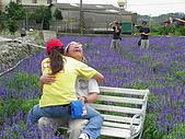2006-05-07后豐鐵馬道:DSCN2097