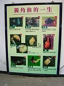 2006-02-19小人國一日遊:DSCN1917