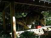 2005-10-21日本東京行第三天,箱根溫泉之旅~~:DSCN0623